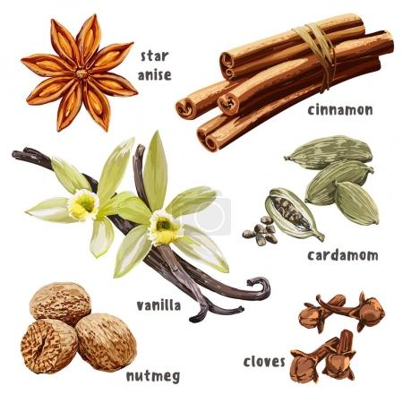 Set of dessert spices