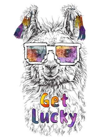 LAMA Alpaca in eyeglasses
