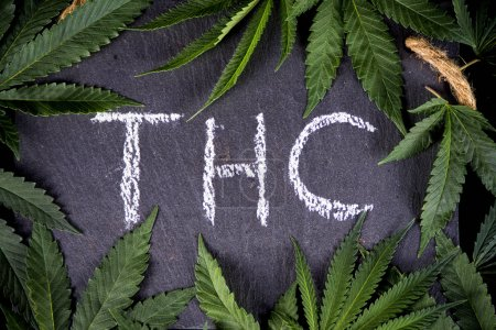Medical marijuana background with cannabis leaves framing THC
