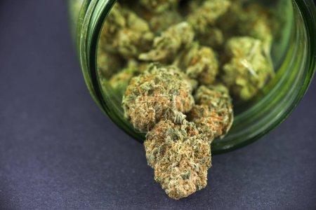 Detail of cannabis bud (crimson strain) on green glass jar