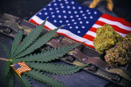 Photo for Cannabis buds, leaf and american flag with some bullets and camo - veteran themed medical marijuana concept - Royalty Free Image