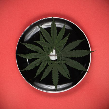 Cannabis leaves on a dish - medical marijuana infused edibles co