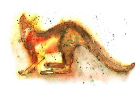 Watercolor illustration of kangaroo.