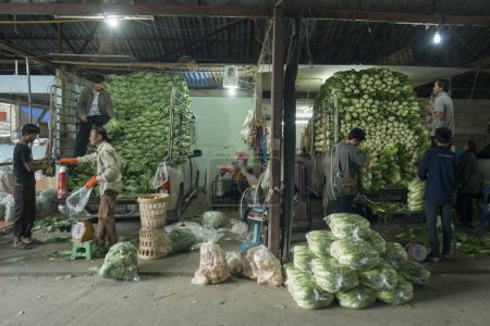 fresh vegetables  from the farmers