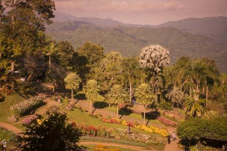 People in Mae Fah Luang  garden