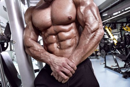 Strong Athletic Man Fitness Model Torso showing abdominal six pa