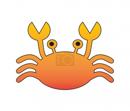 Flat crab isolated on white