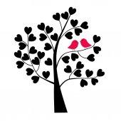 Pair of lovebirds on tree branch  valentine day wallpaper
