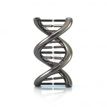 Chrome DNA molecule icon