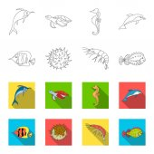 Shrimp fish hedgehog and other speciesSea animals set collection icons in outlineflet style vector symbol stock illustration web