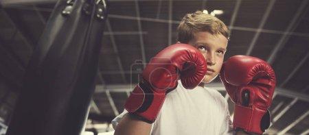 Boy Training Boxing Exercise