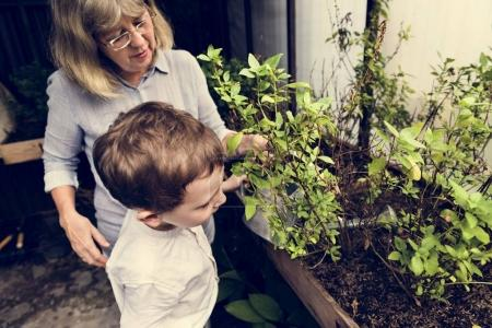 Grandmother with grandson in home garden