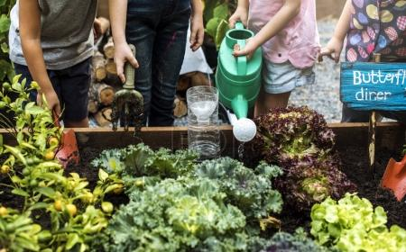 kids learning gardening outdoors