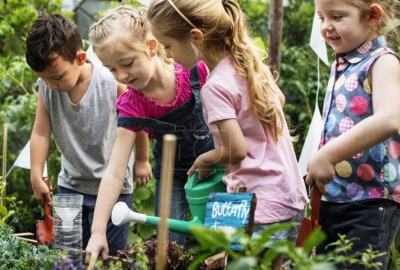 Group of kindergarten learning gardening