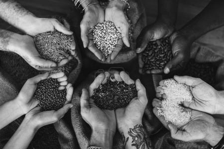 Hands holding seeds and grains