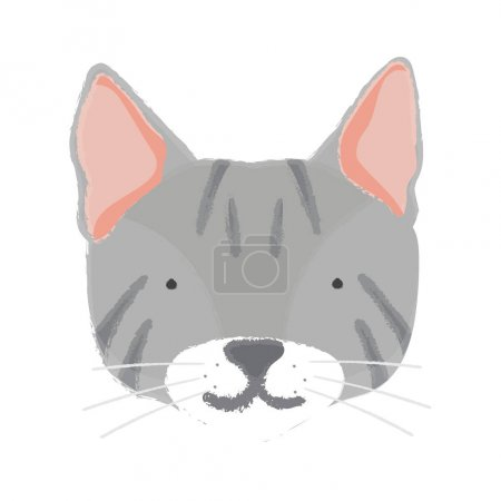 Illustration of muzzle of a cat