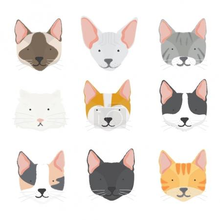 Illustration of cat and dogs icon collection