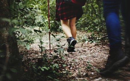 Friends trekking in the forest
