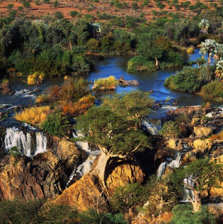 oasis in african desert