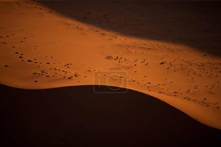 beautiful desert dunes on sunset