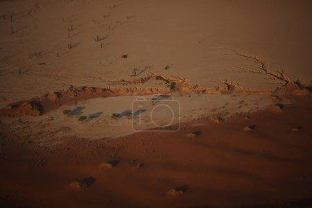 belles dunes du désert sur coucher de soleil
