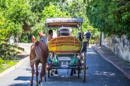 Photo for ISTANBUL, TURKEY - JANUARY 26, 2016:  horse carriage  riding on road - Royalty Free Image