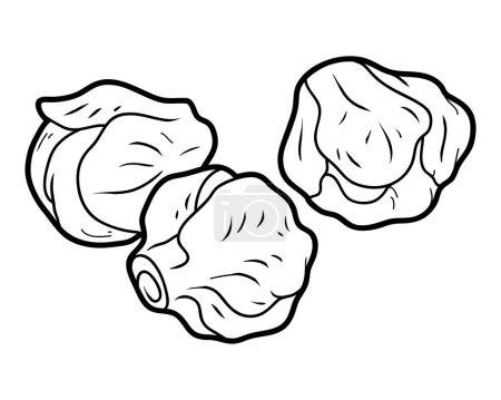 Illustration pour Livre à colorier pour enfants, légumes, choux de Bruxelles - image libre de droit