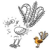 Numbers game Lyrebird