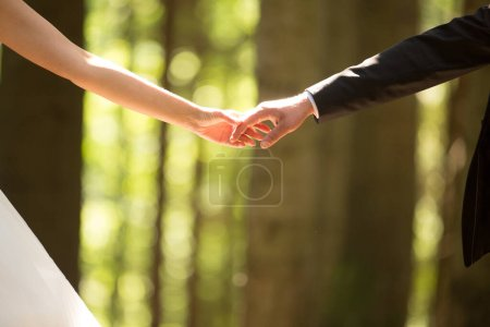 Photo for Hands of the bride and groom on a sunny day on a bokeh background. - Royalty Free Image