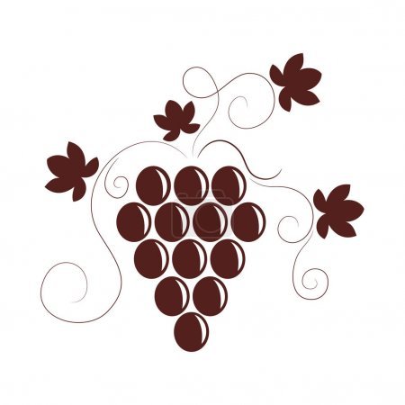 Vector illustration with grapes