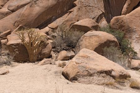 Spitzkoppe group of bald granite peaks in the Namib desert, Namibia