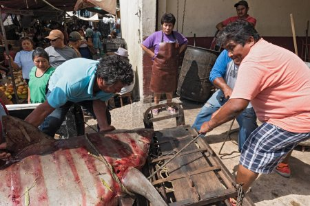 CAMPECHE, MEXICO-MARCH 13, 2018: Delivery of a shark to the fish department of the Mercado Principal in Campeche, Mexico