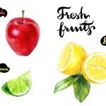 Lemon, apple and lime