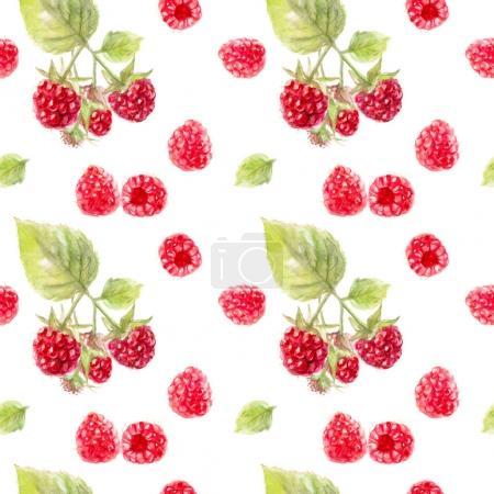 Raspberry watercolor pattern