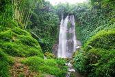 Vodopád v zelený tropický prales na den