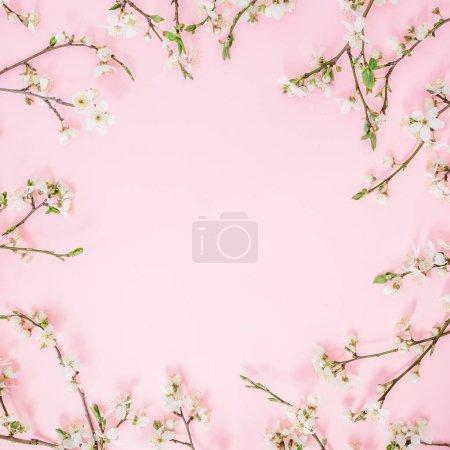 Photo pour Cadre floral de fleurs printanières isolé sur fond rose. Couché à plat, vue de dessus. Printemps arrière-plan . - image libre de droit