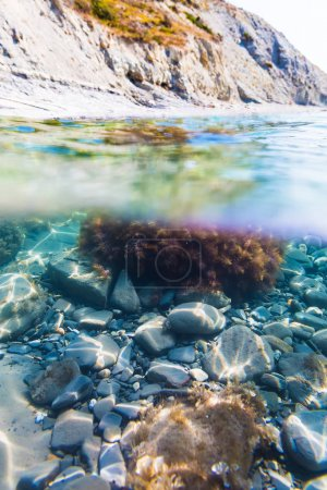 Sun rays and seaweed on stones in underwater. Clear water in sea, summer day