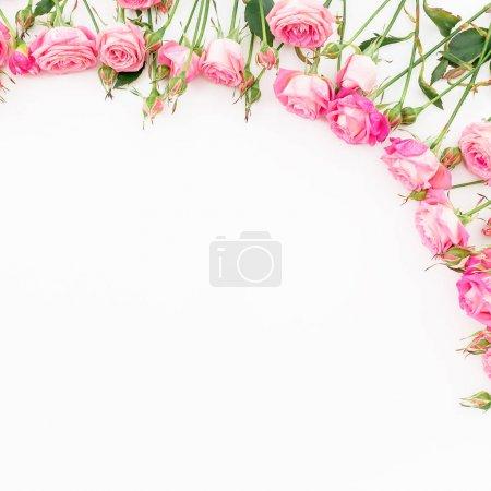 Foto de Oferta rosas sobre fondo blanco - Imagen libre de derechos