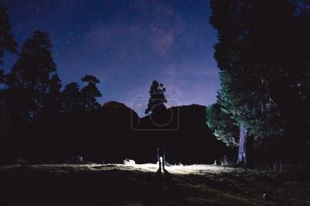 Milky Way, trees and silhouette of man with light in the mountains. Night landscape