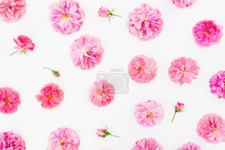 Floral composition with pink flowers. Flat lay, Top view.