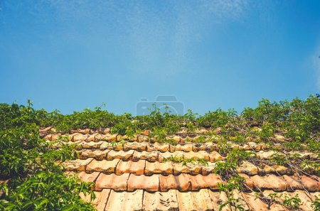 Old tiled roof and blue clean sky