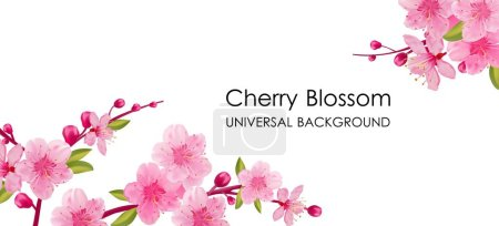 Illustration for Branch of sakura with flowers and leaves on pink background. Cherry blossom spring design. - Royalty Free Image