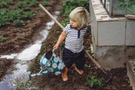boy sprinkles strawberry beds from watering can