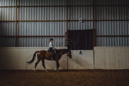 girl training horse in arena