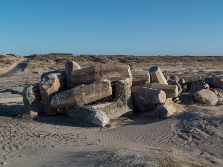 beach with concrete pillars as protection