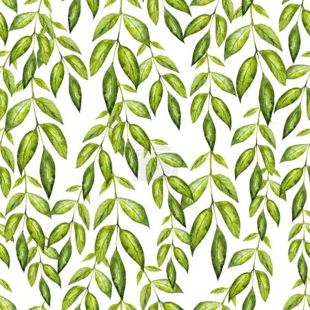 Photo for Beautiful watercolor pattern with green leaves. Illustration - Royalty Free Image