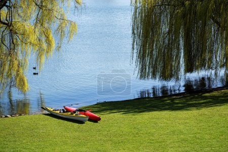 Two kayaks lie in the lawn under trees on the wide shore of a ake, ready for leisure activity