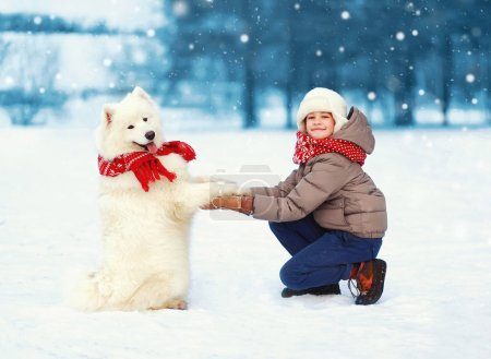 Christmas happy teenager boy playing with white Samoyed dog on s