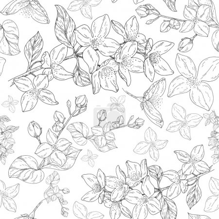 Illustration for Plant in blossom, branch with flowers ink sketch on white background. Vector illustration for your design - Royalty Free Image