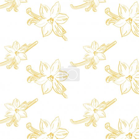 Illustration for Vanilla flower vector hand drawn sketch - Royalty Free Image